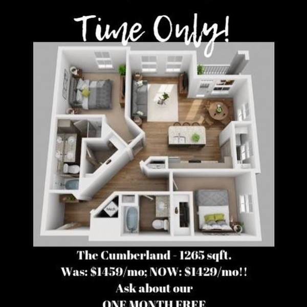 What's that you say?! A DISCOUNTED RATE?! In SUMMER?! We MUST be CrAzY! . For a limited time, The Cumberland - our largest, most spacious, most beautifulest(okay...we may have made up that word!!) - 2-bedroom floor plan is discounted!  Was: $1459/mo, NOW: $1429/mo!  That's a savings of $360/year!  Do you KNOW what you could do with an extra $360!???!!? . . . Come check it out!  Oh...and while you're here, ask us about our 1-month free special!  #IKNOWRIGHT . #CrazySpecials #OneMonthFree #DiscountedRent #Rent #Lease #GNAA #Greystar #SoutheastBeastMode #WolkeWarriors #FallFeatures #Murfreesboro #BrandNew #NewConstruction #Apartments #TNApts #NowLeasing #LeaseUp #BestStaffEVER #LoveWhereYouLive