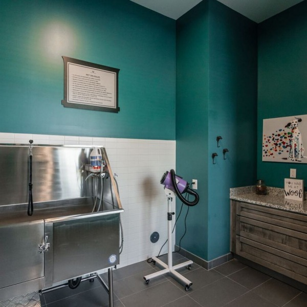 We are pretty positive your fur baby will approve of this awesome Pet Spa we have here at The Banks - ours sure do!